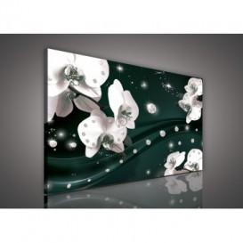 Obraz na plátne obdĺžnik - OB0597 - Orchidea