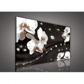 Obraz na plátne obdĺžnik - OB0598 - Orchidea