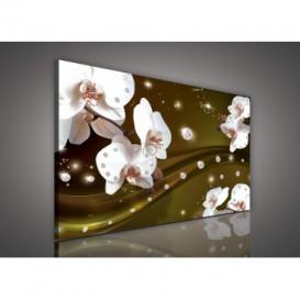 Obraz na plátne obdĺžnik - OB0599 - Orchidea