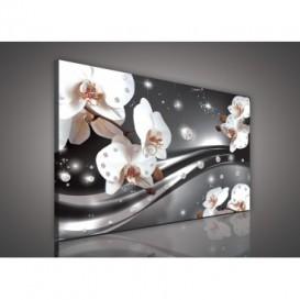 Obraz na plátne obdĺžnik - OB0600 - Orchidea