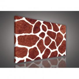 Obraz na plátne obdĺžník - OB0124 - Žirafia koža