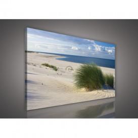 Obraz na plátne obdĺžnik - OB0223 - Pláž