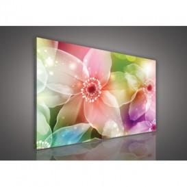 Obraz na plátne obdĺžnik - OB0127 - Farebné kvety