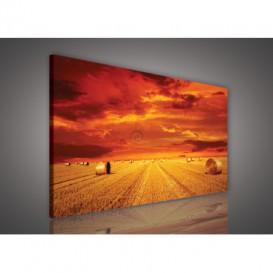 Obraz na plátne obdĺžnik - OB0225 - Západ slnka