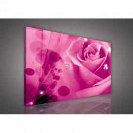 Obraz na plátne obdĺžnik - OB0128 - Ružová ruža