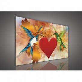 Obraz na plátne obdĺžnik - OB0249 - Vtáčiky a srdce