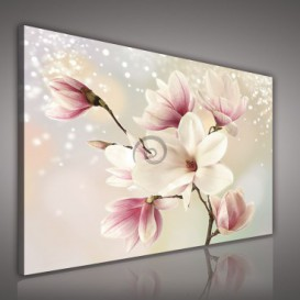 Obraz na plátne obdĺžnik - OB0682 - Ružové kvety