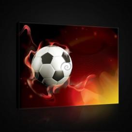 Obraz na plátne obdĺžnik - OB0696 - Futbalová lopta