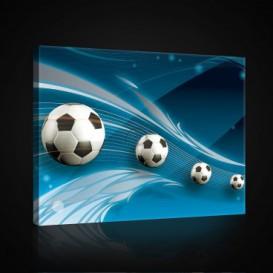 Obraz na plátne obdĺžnik - OB0697 - Futbalová lopta