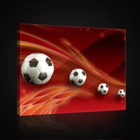 Obraz na plátne obdĺžnik - OB0698 - Futbalová lopta