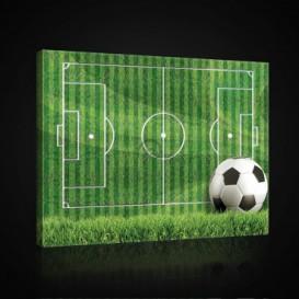 Obraz na plátne obdĺžnik - OB0699 - Futbalová lopta