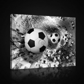Obraz na plátne obdĺžnik - OB0701 - Futbalová lopta