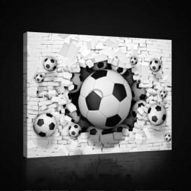 Obraz na plátne obdĺžnik - OB0703 - Futbalová lopta