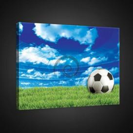 Obraz na plátne obdĺžnik - OB0704 - Futbalová lopta