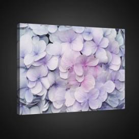 Obraz na plátne obdĺžnik - OB0706 - Ružové kvety