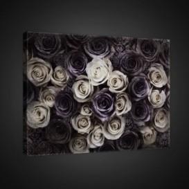 Obraz na plátne obdĺžnik - OB0707 - Čiernobiele ruže