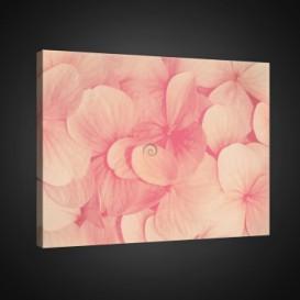 Obraz na plátne obdĺžnik - OB0709 - Ružové kvety