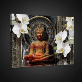 Obraz na plátne obdĺžnik - OB0726 - Budha