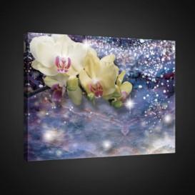 Obraz na plátne obdĺžnik - OB0732 - Žlté kvety