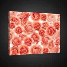 Obraz na plátne obdĺžnik - OB0751 - Ruže