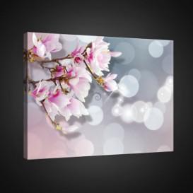 Obraz na plátne obdĺžnik - OB0776 - Ružové kvety