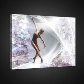 Obraz na plátne obdĺžnik - OB0800 - Baletka