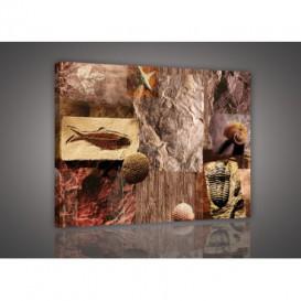 Obraz na plátne obdĺžnik - OB0136 - Mozaika skamenelín