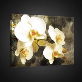 Obraz na plátne obdĺžnik - OB0807 - Žlté kvety