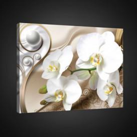 Obraz na plátne obdĺžnik - OB0808 - Biele kvety