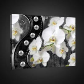 Obraz na plátne obdĺžnik - OB0810 - Biele kvety