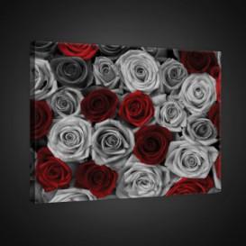 Obraz na plátne obdĺžnik - OB0842 - Ruže