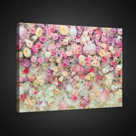 Obraz na plátne obdĺžnik - OB0843 - Farebné kvety