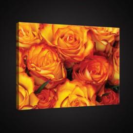 Obraz na plátne obdĺžnik - OB0902 - Oranžové ruže