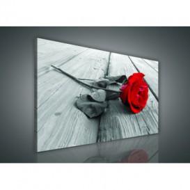 Obraz na plátne obdĺžnik - OB0918 - Ruža