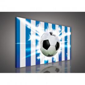 Obraz na plátne obdĺžnik - OB0202 - Futbalová lopta