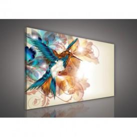 Obraz na plátne obdĺžnik - OB0142 - Vtáčik