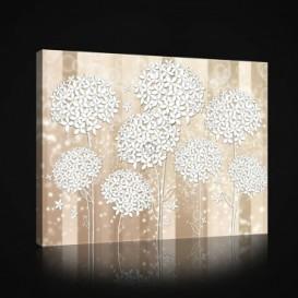 Obraz na plátne obdĺžnik - OB0998 - Biele kvety