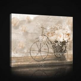 Obraz na plátne obdĺžnik - OB1022 - Vintage
