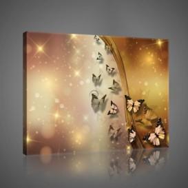 Obraz na plátne obdĺžnik - OB1041 - Motýle