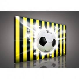 Obraz na plátne obdĺžnik - OB0207 - Futbalová lopta