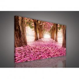 Obraz na plátne obdĺžnik - OB1081 - Ružový les