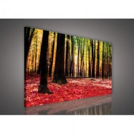 Obraz na plátne obdĺžnik - OB1087 - Ružový les