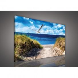 Obraz na plátne obdĺžnik - OB1103 - Pláž