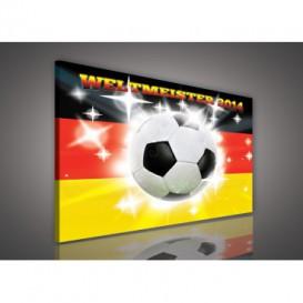 Obraz na plátne obdĺžnik - OB1108 - Futbalová lopta