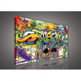 Obraz na plátne obdĺžnik - OB1119 - Grafity