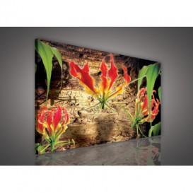 Obraz na plátne obdĺžnik - OB1126 - Červený kvet