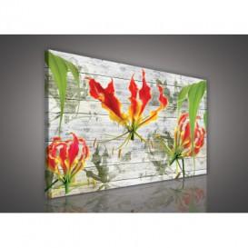 Obraz na plátne obdĺžnik - OB1129 - Červený kvet
