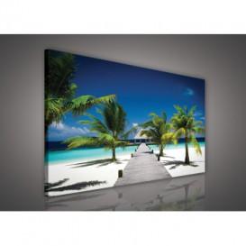 Obraz na plátne obdĺžnik - OB1155 - Pláž