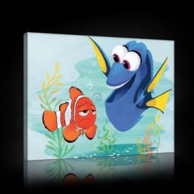 Obraz na plátne obdĺžnik - OB1563 - Hľadá sa Nemo