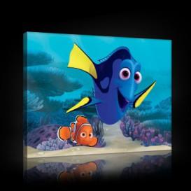 Obraz na plátne obdĺžnik - OB1566 - Hľadá sa Nemo